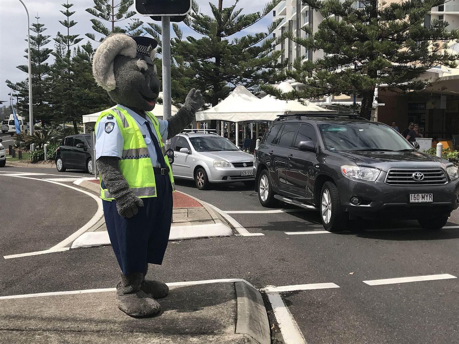Constable clancy the koala visits mooloolaba sunshine coast for Clancy motors used cars